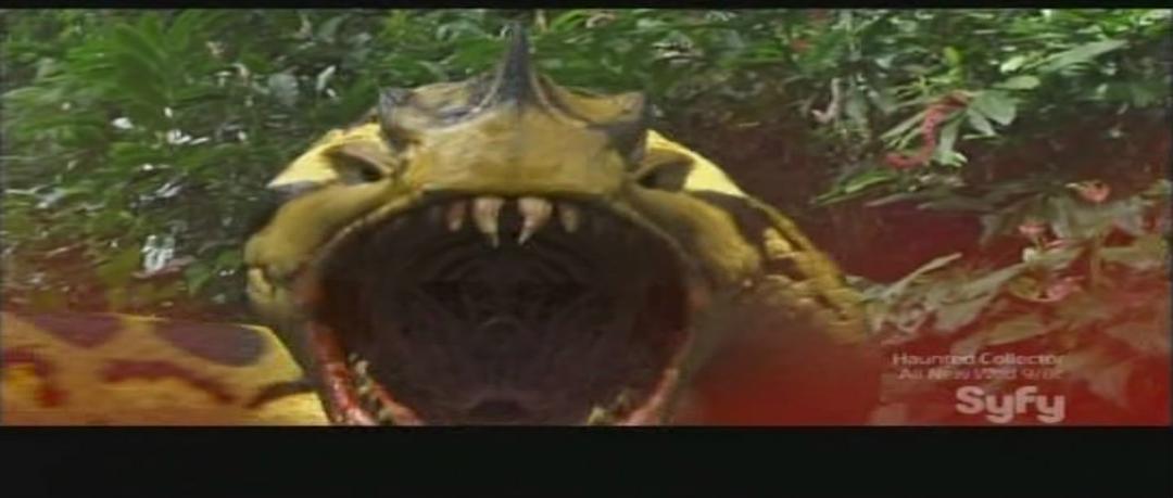 蛇鱼怪 剧照3