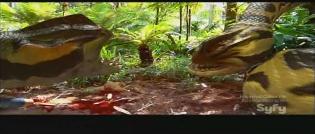 蛇鱼怪 剧照9